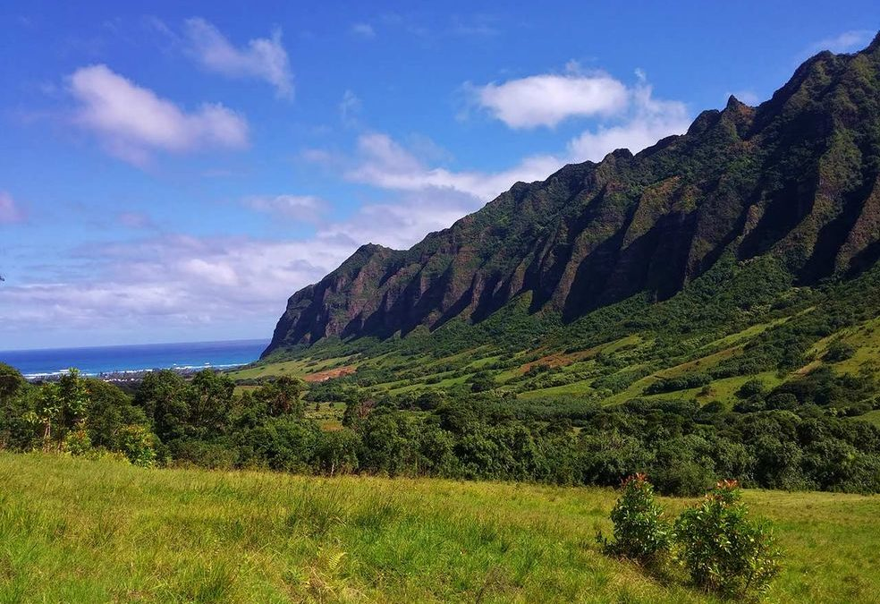 23 Family Friendly Things to do in Oahu, Hawaii